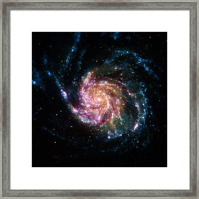 A Pinwheel In Many Colors Framed Print
