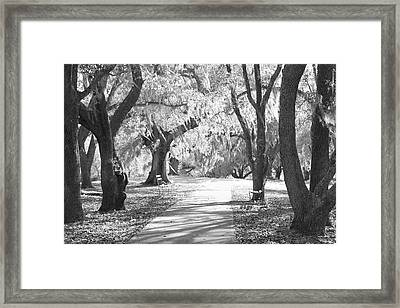 A Place For Contemplation Ir Framed Print by Suzanne Gaff