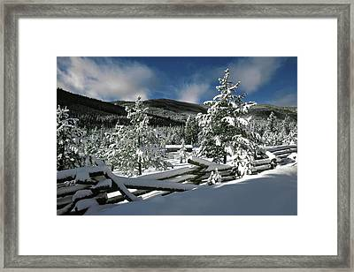 A Place In The Winter Sun Framed Print