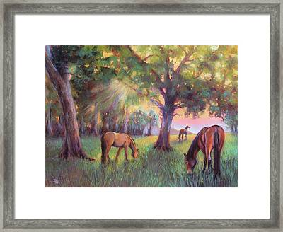 A Place Of Healing Framed Print by Susan Jenkins