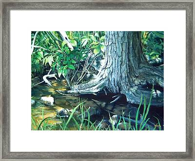 A Place Of Magic Framed Print by William  Brody