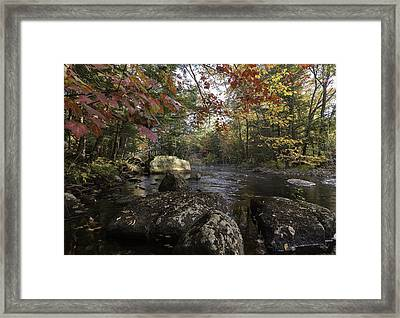 A Place To Ponder Framed Print by Everet Regal