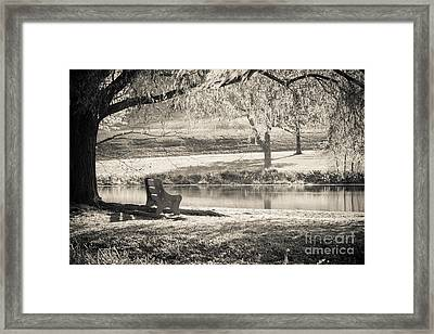 A Place To Rest Framed Print by Ana V Ramirez