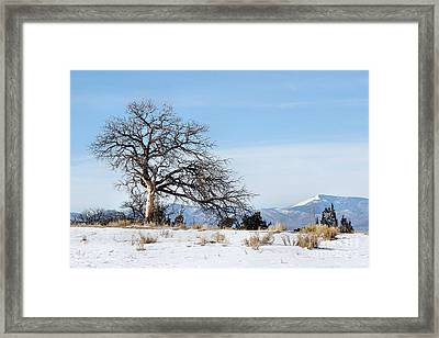 A Placid Winter Scene Framed Print