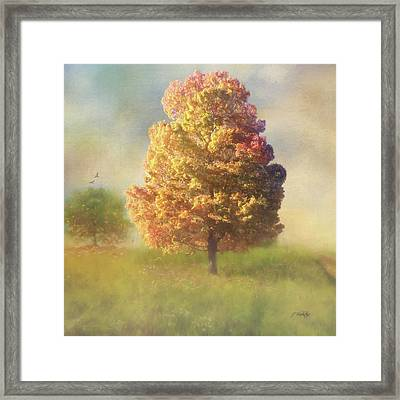 A Poem As Lovely As A Tree - Autumn Art Framed Print by Jordan Blackstone