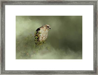 A Predators Watch Framed Print