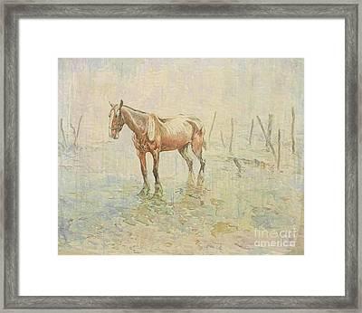 A Prisoner Of War. War Horses Of World War One Framed Print