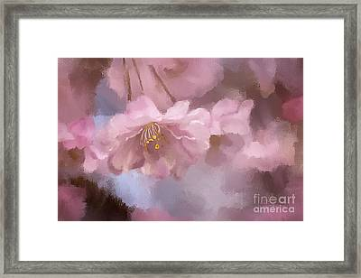 A Profusion Of Playful Pinks Framed Print by Lois Bryan