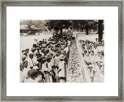 A Properly Segregated Summer Social Framed Print