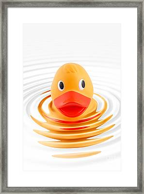 A Quick Dip Framed Print by Martin Williams