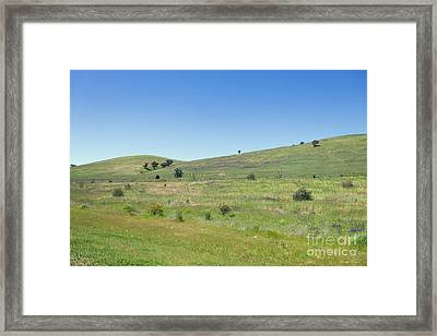 Framed Print featuring the photograph A Quiet Interlude by Linda Lees