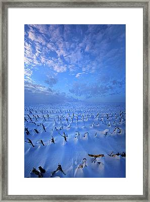 Framed Print featuring the photograph A Quiet Light Purely Seen by Phil Koch