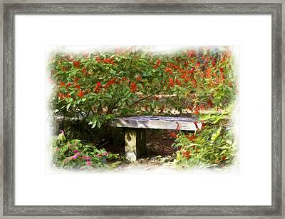 A Quiet Place Framed Print by Carolyn Marshall