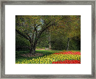 Framed Print featuring the photograph A Quiet Place by John Rivera