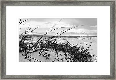 A Quiet Place Framed Print