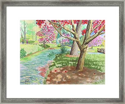 A Quiet Stroll In The Japanese Gardens Of Gibbs Gardens Framed Print