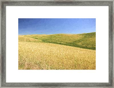 A Quiet Walk II Framed Print