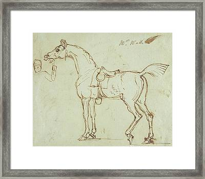 A Racehorse, Bridled And Saddled  Framed Print by James Seymour