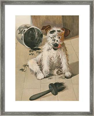 A Ragamuffin Framed Print by English School