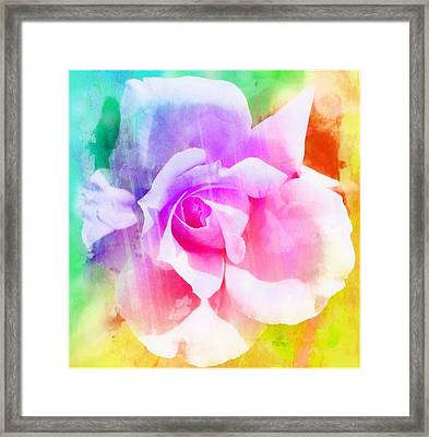 A Rainbow Of A Rose Two Framed Print by Cathie Tyler
