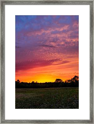 A Rainbow Of Colors Framed Print by Shelby Young