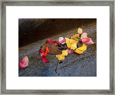 A Rainy Autumn Day In The City Framed Print