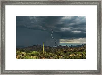 Framed Print featuring the photograph A Rainy Sonoran Day  by Saija Lehtonen