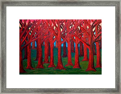 A Red Wood - Sold Framed Print by Paul Anderson