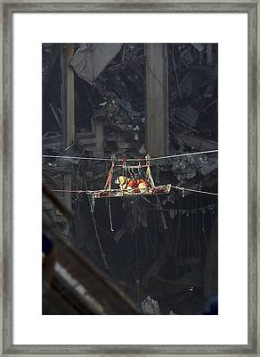 A Rescue Dog Is Transported Framed Print