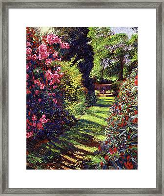 A Rhododendron Stroll Framed Print by David Lloyd Glover