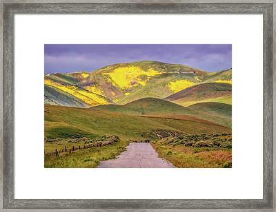 Framed Print featuring the photograph A Road Less Traveled by Marc Crumpler