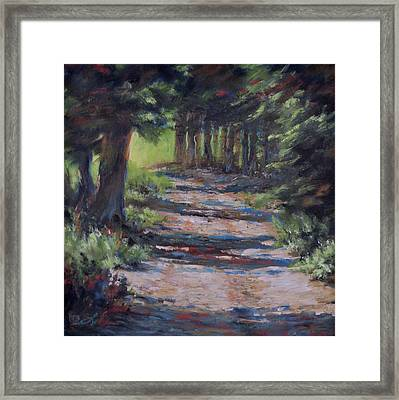 A Road Less Travelled Framed Print by Mia DeLode