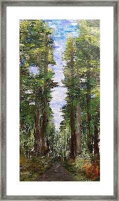 A Road Seldom Traveled Framed Print by Deborah Gall