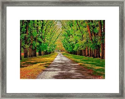 A Road Through Autumn Framed Print