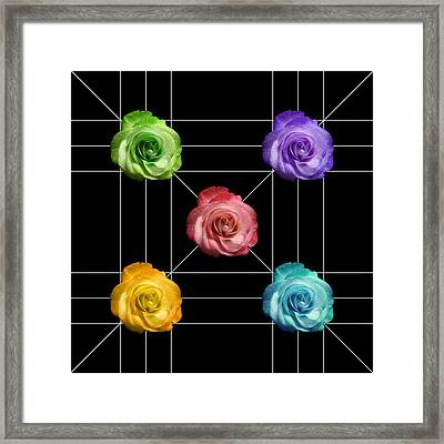 A Rose Is A Rose Is A Rose Framed Print by Peter Piatt
