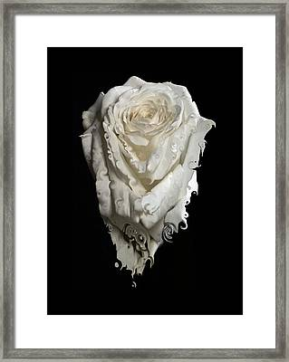 A Rose Melted Down In A Moment Framed Print by Cristina Tamiso