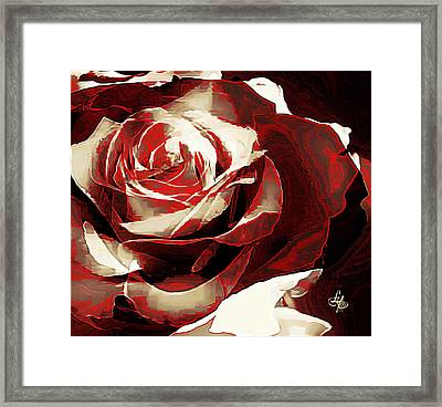 A Rose Of Love Framed Print