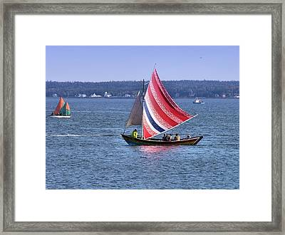 A Sail Of Many Colors Framed Print