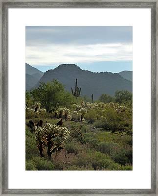 A Scottsdale Vista Framed Print by Gordon Beck