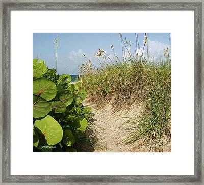Framed Print featuring the photograph A Sea Grape Welcome by Michelle Wiarda