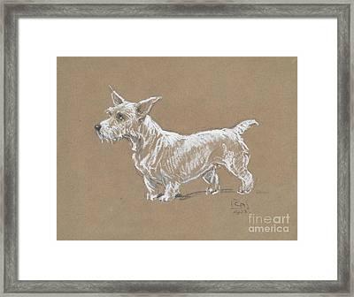 A Sealyham Terrier Framed Print