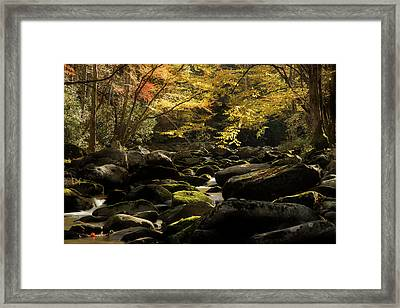 A Season Yielding Framed Print by Mike Eingle