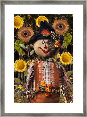 A Seasonal Guy Framed Print by Jack Zulli