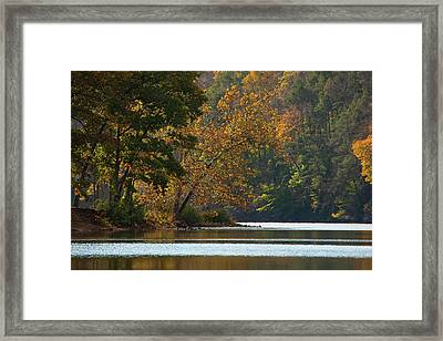 A Seasons View Framed Print by Karol Livote