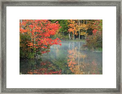 A Seat To Watch Autumn Framed Print