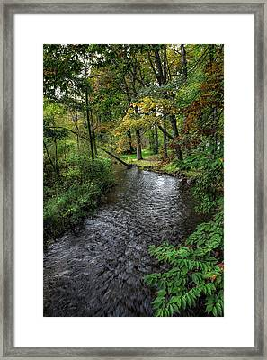 A Secluded Little Creek Framed Print by John M Bailey
