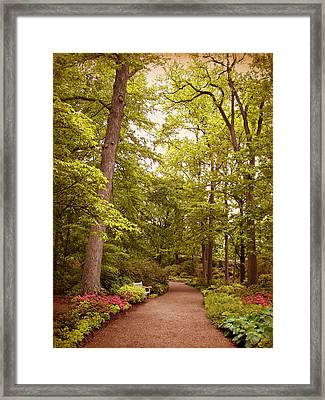 A Secret Garden Framed Print