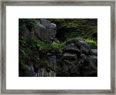 Framed Print featuring the photograph A Secret Place by Marilynne Bull