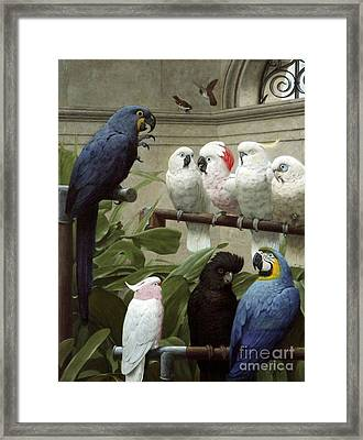 A Select Committee Framed Print by MotionAge Designs