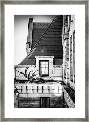 A Sense Of Sight Framed Print